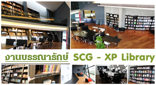 SCG XP 